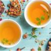 Các loại trà giảm cân có nguồn gốc từ thảo dược như Garcinia Cambogia, trà xanh, lá sen...là một trong những phương pháp giảm cân đạt hiệu quả lâu dài mà không gây tác hại cho sức khỏe
