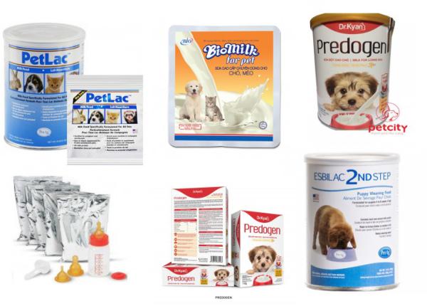 Sữa cũng là loại thức ăn cho chó có giá rẻ tại Petcity