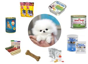 thức ăn cho chó có giá rẻ tại petcity là các loại thức ăn như pate, thức ăn khô, thức ăn ướt, snack, xương, bánh thưởng và sữa