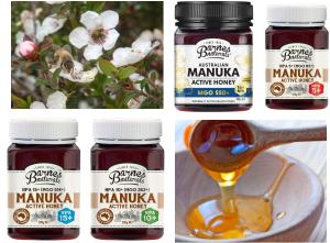 mật ong manuka của úc là loại mật ong tự nhiên đắt giá nhất trên thế giới
