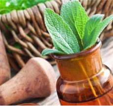 cách cải thiện hệ tiêu hóa từ các thảo dược tự nhiên đem lại nhiều hiệu quả cho sức khỏe