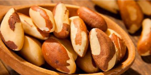 Quả hạch Brazil cũng là một loại trái cây sấy khô nhiều lợi ích