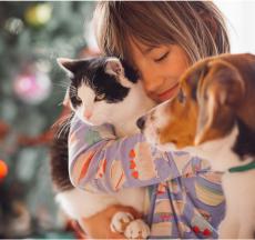 lợi ích của việc nuôi thú cưng mang lại nhiều cảm xúc tuyệt vời cho chủ sở hữu