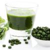 công dụng của tảo lục chlorella rất có nhiều lợi ích cho sức khỏe con người