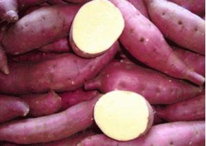 tác dụng của Khoai lang đỏ đem lại hương vị ngọt ngon và nhiều lợi ích cho sức khỏe
