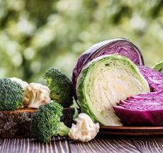 tác dụng của bắp cải đem lại rất nhiều lợi ích cho sức khỏe con người