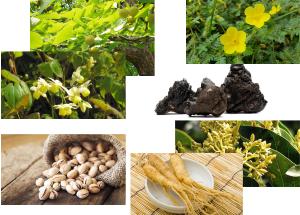 các cây cỏ, thực phẩm có chứa các chất giúp làm tăng cường sinh lý nam giới một cách tự nhiên, an toàn và hiệu quả