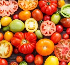 táo, cà chua, tỏi, hành tây...là các loại thực phẩm chống dị ứng rất tốt