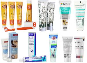 các loại kem đánh răng tốt nhất cho chó mèo từ những thương hiệu chăm sóc thú cưng nổi tiếng