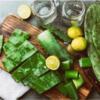 nước ép xương rồng có nhiều công dụng tốt cho sức khỏe