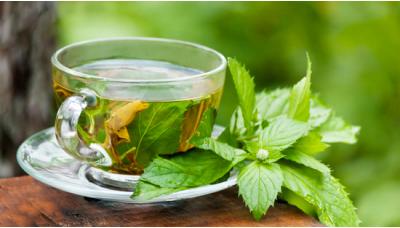 Uống trà bạc hà có tác dụng gì tốt cho lợi ích sức khỏe?