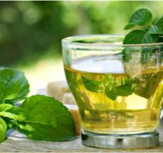 trà bạc hà là một thức uống thông dụng trên thế giới, vậy bạn có biết uống trà bạc hà có tác dụng gì cho cơ thể không?
