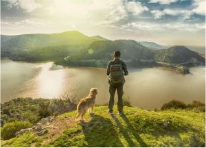 vai trò của thiên nhiên là đem lại nhiều lợi ích cho sức khỏe tâm thần và thể chất